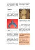 Exposição de artefatos indígenas - Biblioteca da Floresta - Page 3