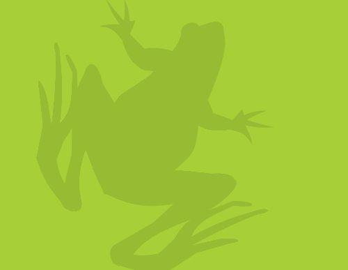Anfíbios - Rede Pró-Fauna