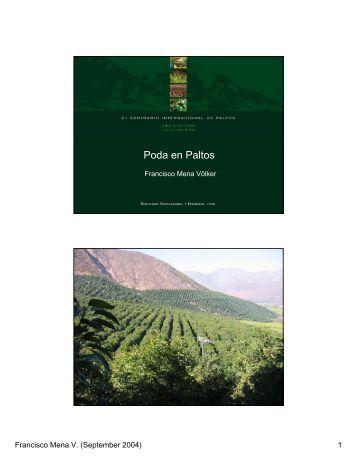 Poda en Paltos (PRESENTACIÓN) - Avocadosource.com