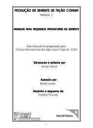 PRODUÇÃO DE SEMENTE DE FEIJÃO COMUM - CIAT Home - cgiar