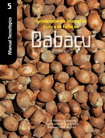 Clique aqui e acesse o manual tecnológico do Babaçu - ISPN