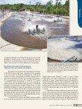 Baixar PDF - Acqua & Imagem - Page 7