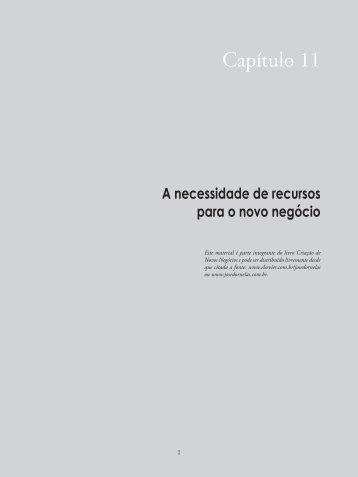 Cap.11 – A necessidade de recursos para o novo negócio