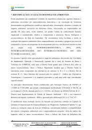 7. IDENTIFICAÇÃO E AVALIAÇÃO DOS IMPACTOS AMBIENTAIS ...