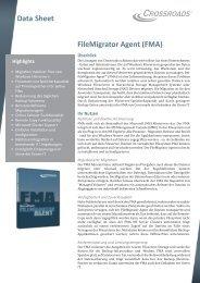 (FMA) Data Sheet Highlights - Zama IT