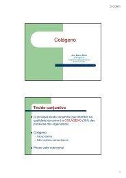 AULA 2- TECIDO colágeno mestrado [Modo de Compatibilidade]
