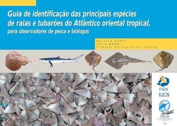 Guia de identificação das principais espécies de raias e tubarões do ...