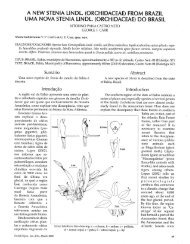 a new stenia lindl. (orchidaceae) from brazil uma nova ... - Epidendra