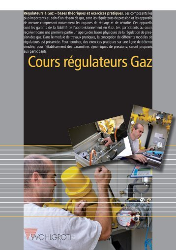 Lire plus! (PDF) - Wohlgroth AG