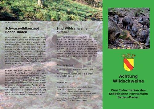 Achtung Wildschweine - Baden-Baden