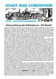 Amtsblatt 12 / 2008 - Bad Lobenstein