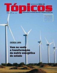 Vem no vento a transformação da matriz energética do ... - Crea-ES
