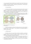 Modelo para a formatação dos artigos para publicação nos ... - Unifra - Page 5