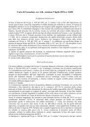 sentenza 9 luglio 2010, n. 16204 - Gruppo Delfino