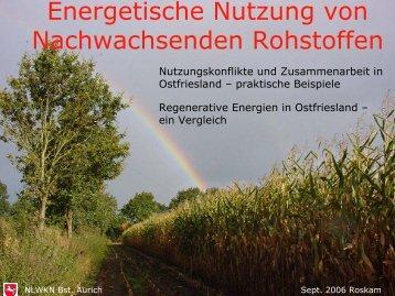 Energetische Nutzung von nachwachsenden Rohstoffen (Herr ...