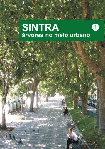 Sintra - Árvores No Meio Urbano I