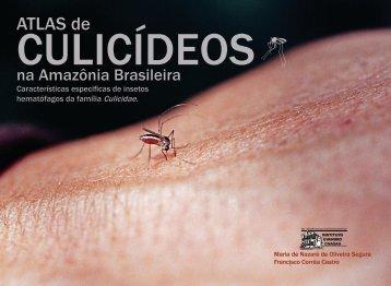 ATLAS de - Governo do Estado do Pará
