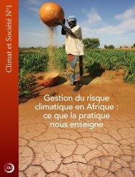 Gestion du risque climatique en Afrique : ce que la pratique nous ...