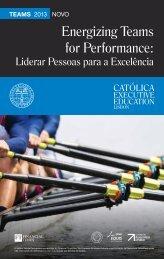 Energizing Teams for Performance: - Católica - Universidade ...