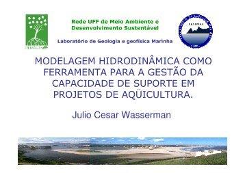 Modelagem Hidrodinâmica para Gestão Ambiental - UFF