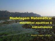 Modelagem Matemática: - Sabesp