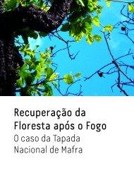 Recuperação da Floresta após o Fogo - Instituto Superior de ...
