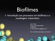 1- Introdução aos processos em biofilmes e a modelagem ... - ITQB