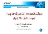 Importância Econômica dos Bubalinos - Faculdade de Medicina ...