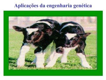 Aplicações da engenharia genética