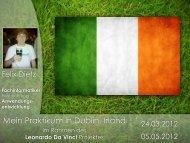 Mein Praktikum in Dublin, Irland