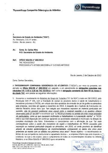 Relatório Grupo de Trabalho Resolução SEA no. 195