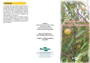 Instruções para o Cultivo da Mangabeira - Embrapa Tabuleiros ...