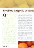 Raiz & Fruto 63 - Embrapa Mandioca e Fruticultura - Page 4
