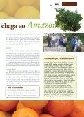 Raiz & Fruto 63 - Embrapa Mandioca e Fruticultura - Page 5