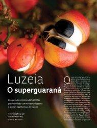 o superguaraná - Revista Pesquisa FAPESP