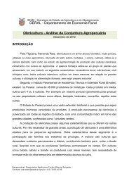 Olericultura - Secretaria da Agricultura e Abastecimento - Estado do ...