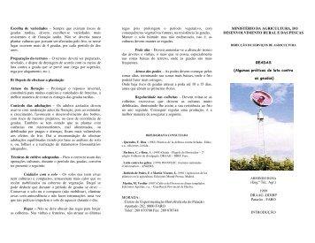 """Folheto """"Algumas práticas de luta contra as geadas - DRAP Algarve"""