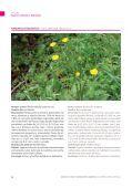Especies comunes - Page 7