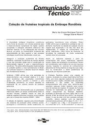 Coleção de fruteiras tropicais da Embrapa Rondônia 306