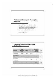 Prática das principais produções agrícolas - Domingos Almeida