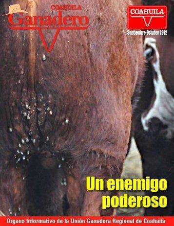 un caballo - Union Ganadera de Coahuila