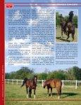 un caballo - Union Ganadera de Coahuila - Page 6