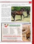 un caballo - Union Ganadera de Coahuila - Page 7