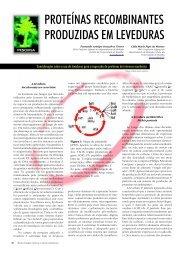 proteínas recombinantes produzidas em leveduras - Biotecnologia