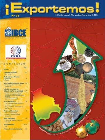 Nº 38 - IBCE