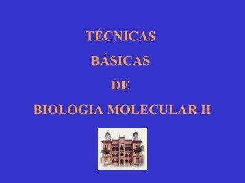 Técnicas básicas de biologia molecular II - DBBM