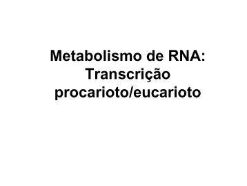 Como os genes são expressos? - Laboratório de Biologia - IFSC