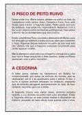 Revista Animais - Mundo dos Animais - Page 6