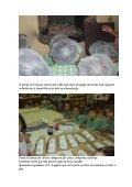 Dia Mundial da Alimentação - Page 3