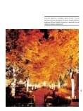 luzes da cidade luzes orientais luzes humanizadas - Page 3